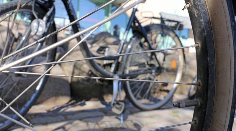 falkenberg-cykel-kommun