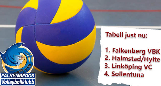 falkenberg-volleyboll-fvbk