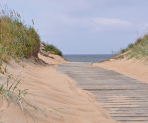skrea-strand-falkenberg