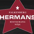 hermans-falkenberg-rådhustorget