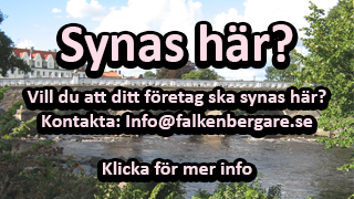 reklam-marknadsföring-annonsering-falkenberg